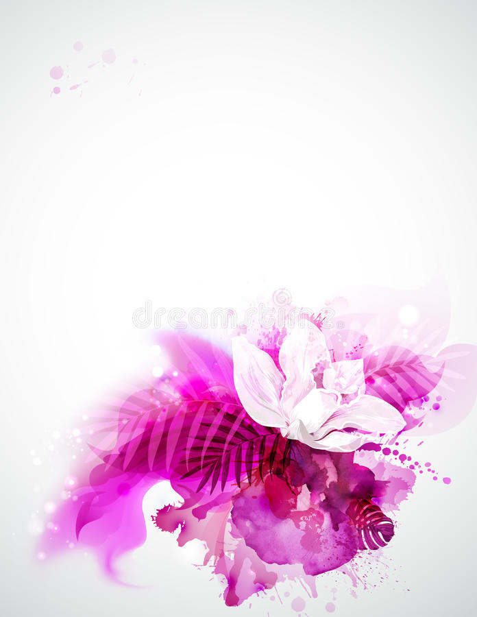 One blooming orchid royalty free illustration