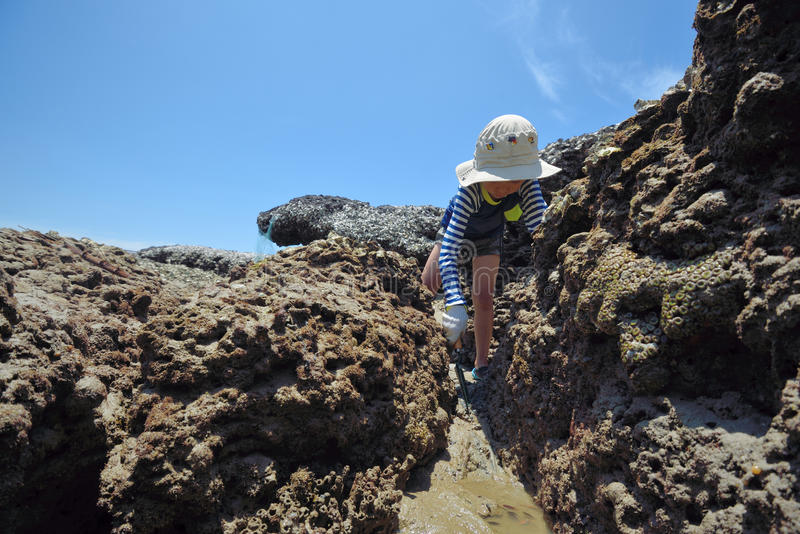 One boy is digging and learning the rocks. royalty free stock image