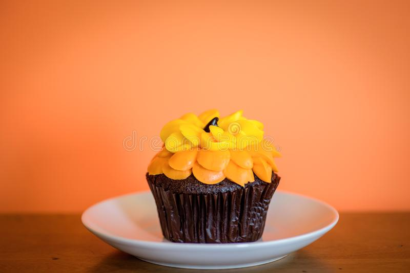 Single Chocolate cupcake on white plate stock photo