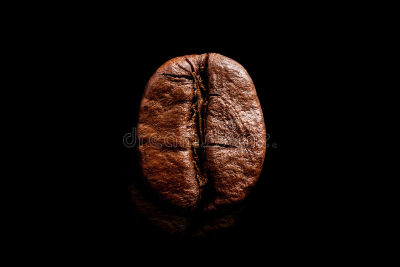 One coffee bean isolated on pure black background. Big macro grain coffee black espresso. Dark roasted coffee. royalty free stock photo