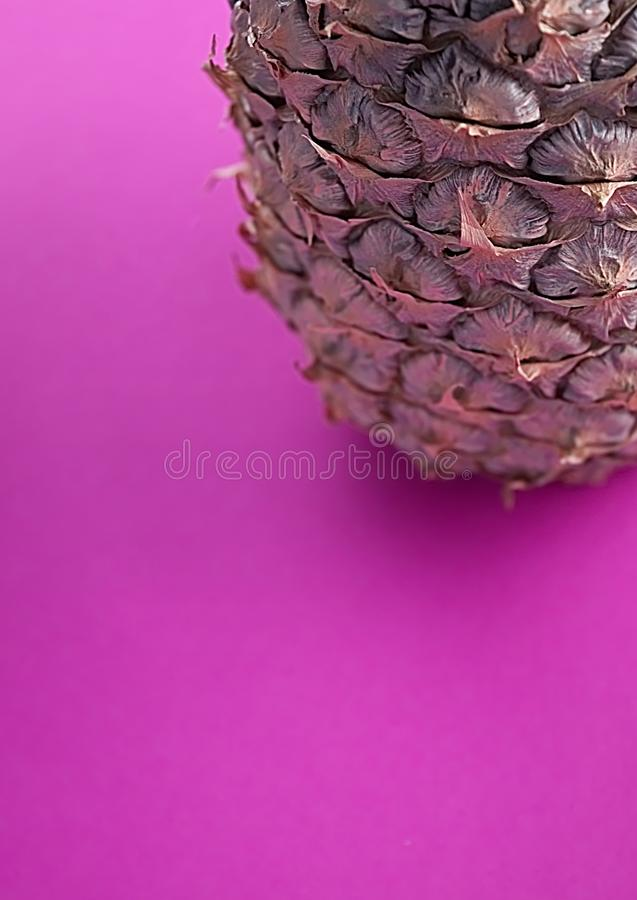 Download One Colored Pineapple On Pink Background Stock Image