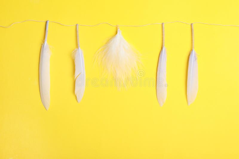 One different feather among others and rope royalty free stock photo