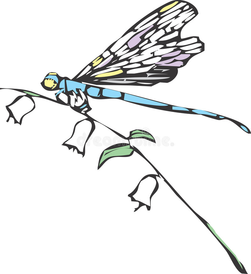 Free One Dragonfly Stock Photography - 9024142