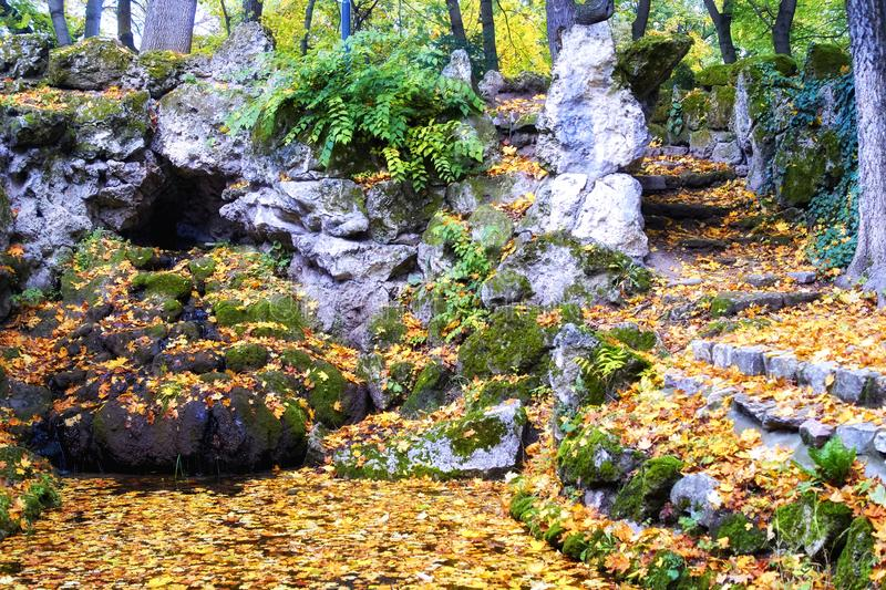 Beautiful autumn pictures of Tata English Park. One of the eternal themes with the coming of you in the beautiful colors, I would like to illustrate the photos royalty free stock photos