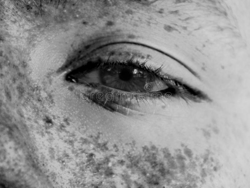 One eye. A peek into the window of a eye surrounded by freckles in black and white royalty free stock photo