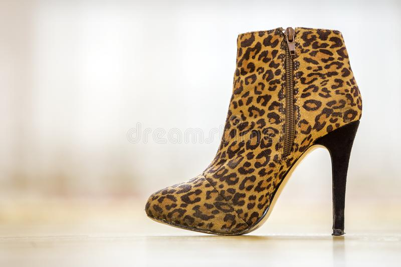 One fashionable high heel brown yellow female shoe boot isolated on light copy space background. Style and fashion, modern stock photos