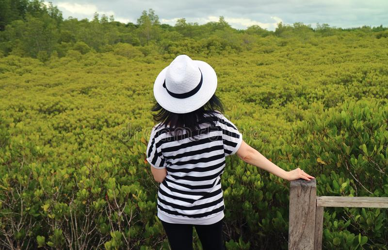 One Female Tourist Admiring Vibrant Green Golden Mangrove Field. In Rayong Province of Thailand royalty free stock photography