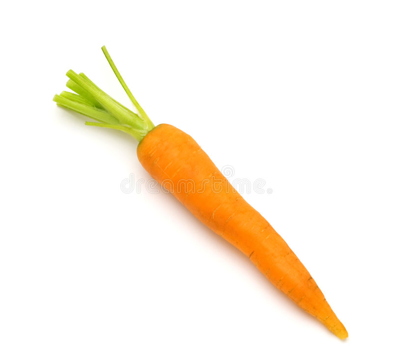 One fresh carrot royalty free stock photos