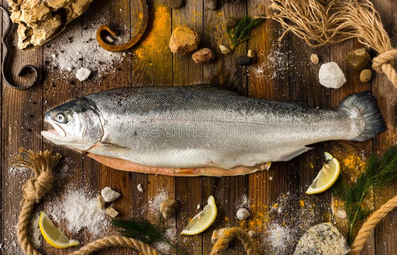 One fresh fish salmon lies on gray boards. Around the sea pebble royalty free stock image