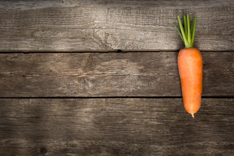 One fresh organic carrot on the wooden table. Copy space. stock photo