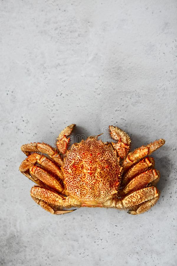 One freshly cooked crab on the gray table royalty free stock images