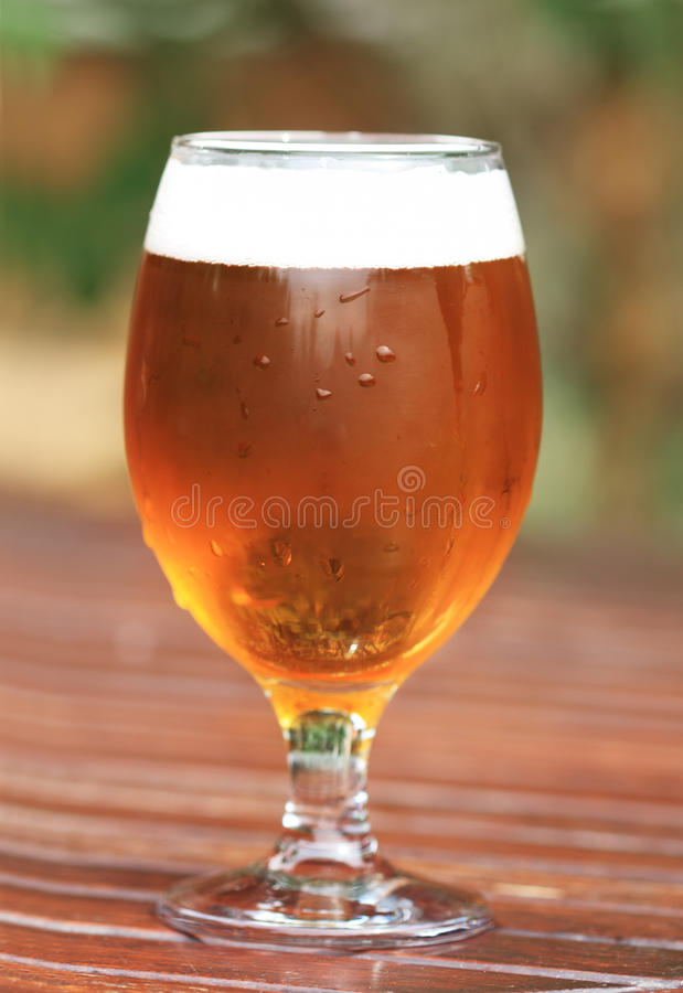 One glass of the light beer stock photos