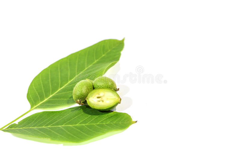 One green walnut cut and recumbent on two whole walnuts with two leaves. One green walnut cut and recumbent on two whole walnuts royalty free stock photo