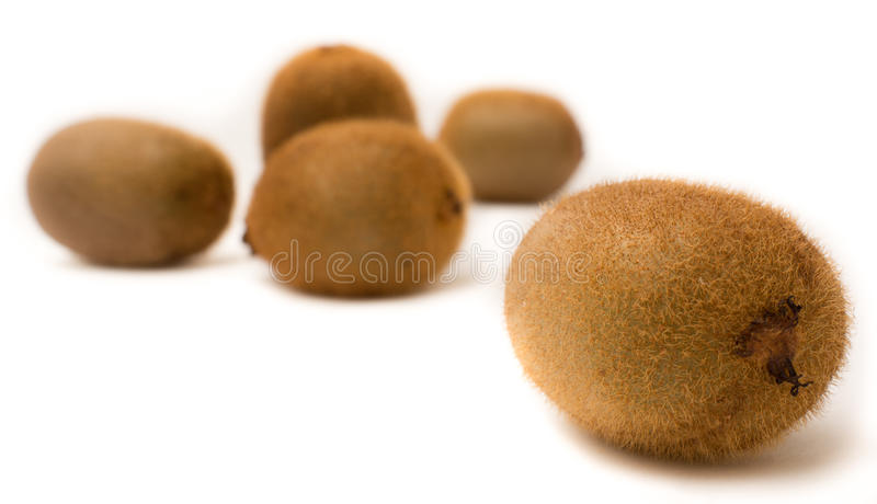 One kiwi compared to other stock photo
