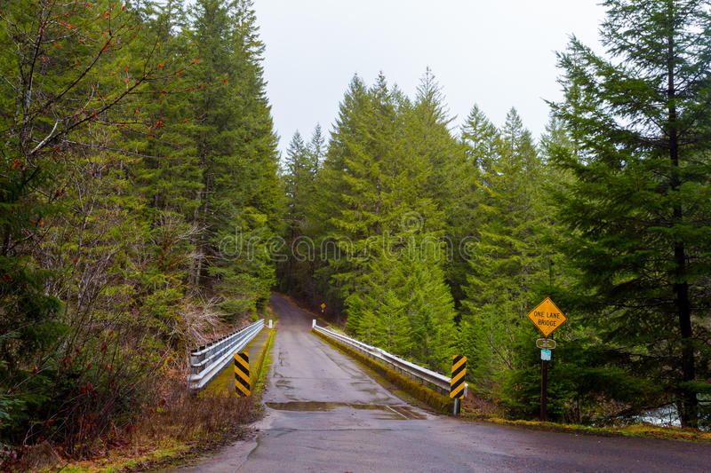 One Lane Bridge in Forest stock photography