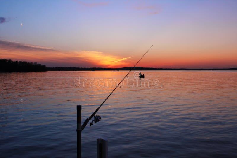 One last fish royalty free stock image