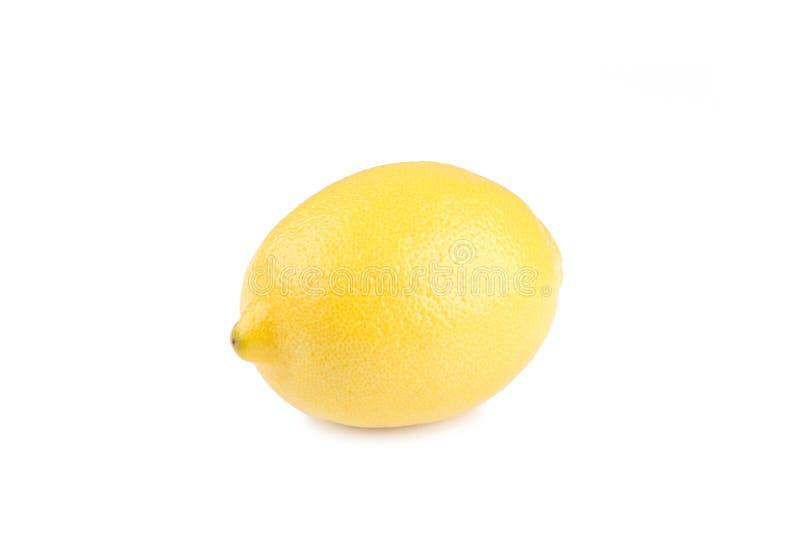 One lemon isolated on white background. Tropical fruit. Lemon isolated on white background. Tropical fruit royalty free stock image