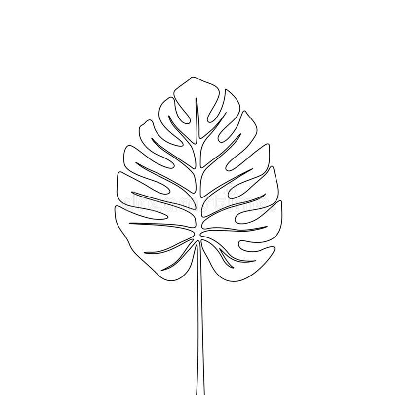 One line drawing split leaf philodendrom monstera.Continuous line exotic tropical plant. vector illustration