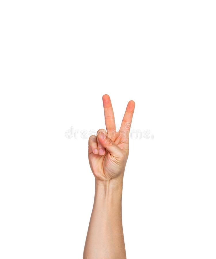 One male hand, fingers in fist with two finger pointing up stock image