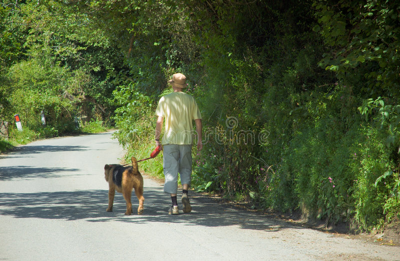 Download One Man and his Dog stock image. Image of people, furry - 2921077