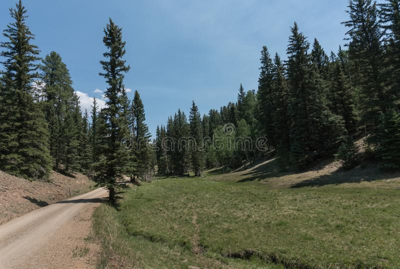 Carson National forest road in New Mexico. This is one of many dirt roads which lead into the Carson National Forest near Taos New Mexico royalty free stock photography