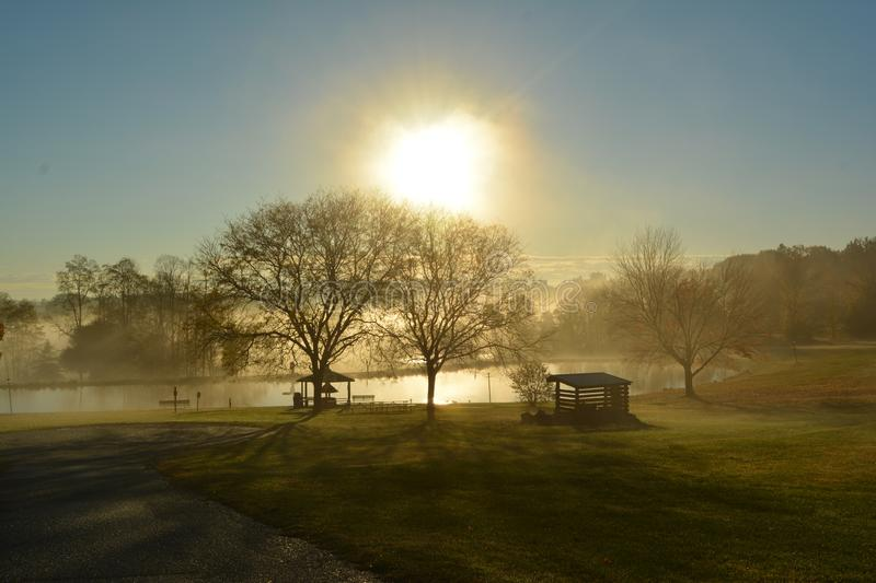 And one more... Sunshine with fog couldn't be more beautiful royalty free stock photo