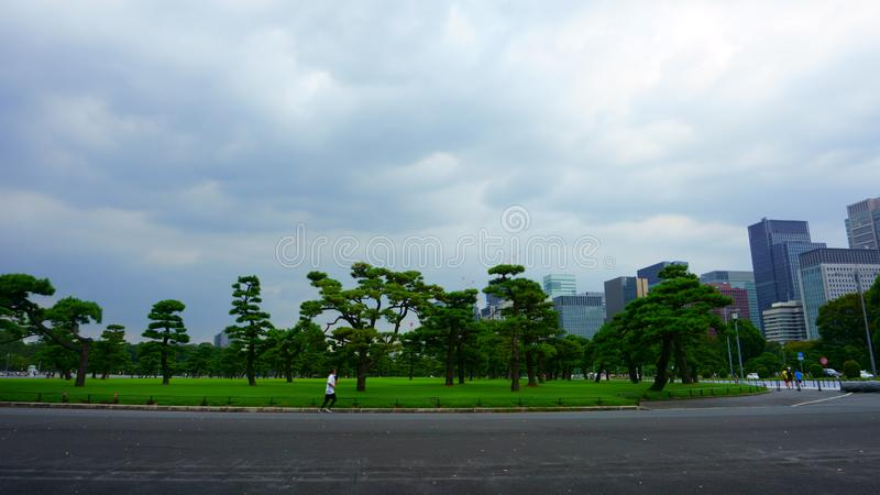 One of the most popular running spots in Tokyo, the Imperial Palace Run or Imperial Run means. Tokyo / Japan - Sept 17 2018: One of the most popular running royalty free stock photo
