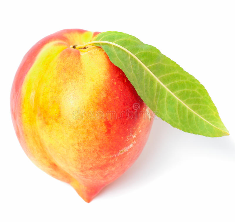 Download One nectarine fruit stock photo. Image of pink, diet - 26080488