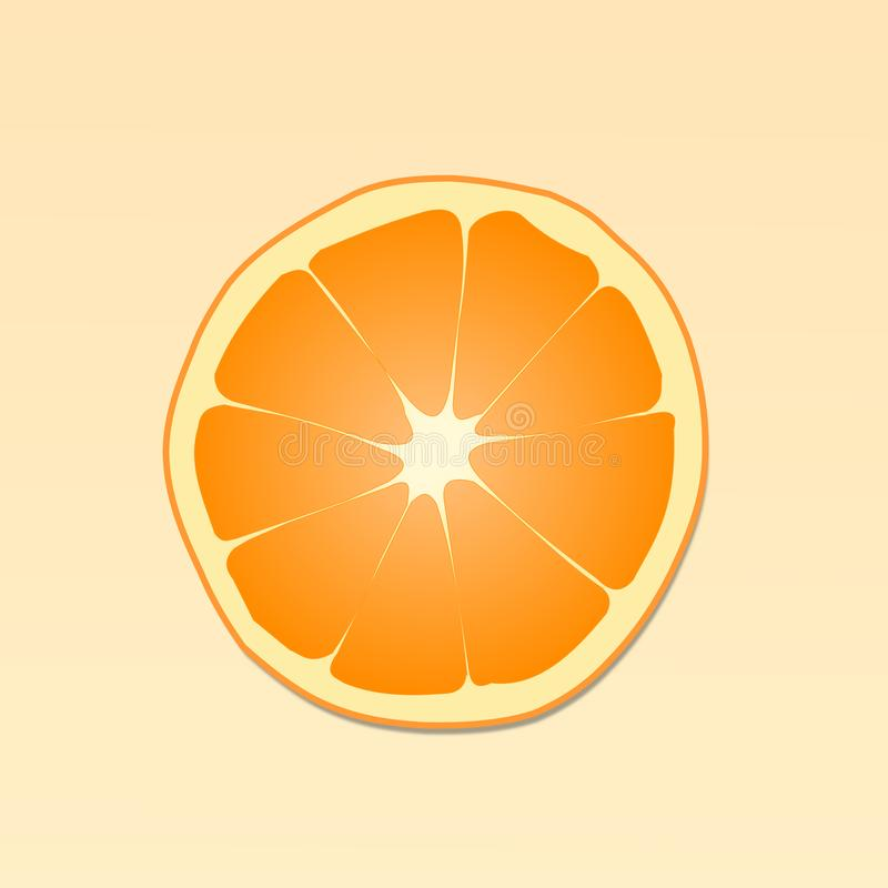 One Orange Slice illustration and vector in  light orange background. Orange slice vector and Illustration. in light Orange background. fresh orange fruit slice vector illustration