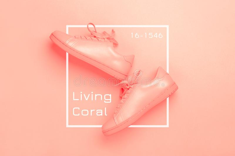 One pair of coral shoes on coral background. royalty free stock photos