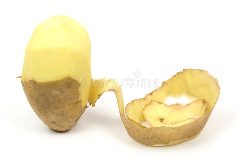 Download One peeled potato stock photo. Image of fries, kitchen - 4975192