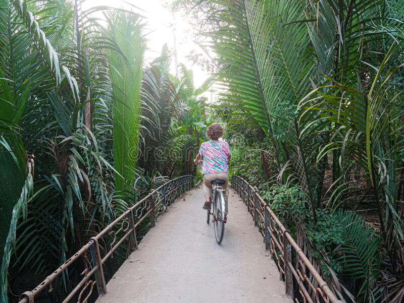 One person riding bicycle in the Mekong Delta region, South Vietnam. Woman cycling on small trail among lush green coconut palm royalty free stock images
