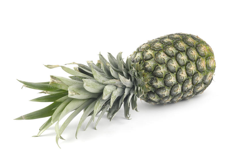 One pineapple. A whole pineapple on white background royalty free stock photo