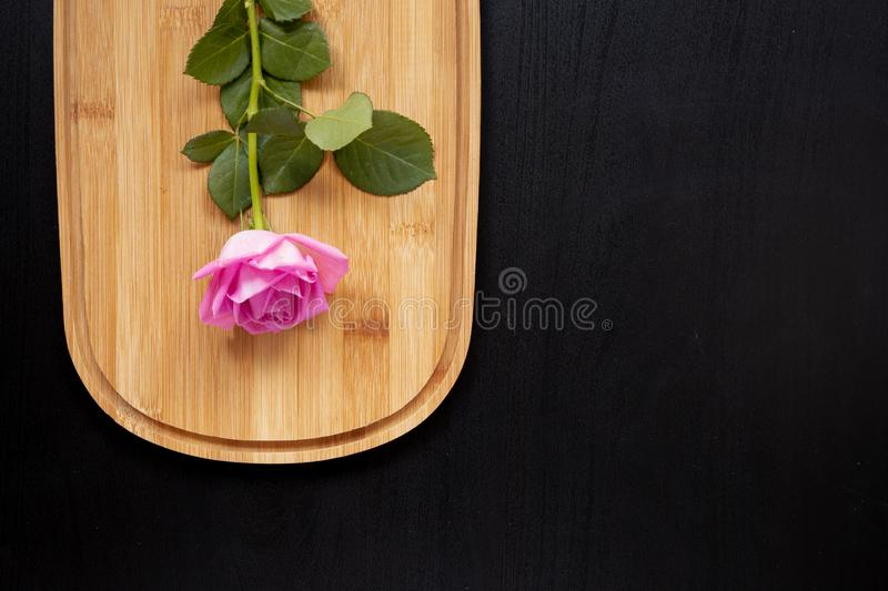 One pink rose lays on a wooden chopping board on a dark background. top view with area for text stock photos