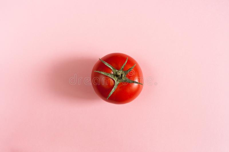 One red tomato in center of pink background. stock photo
