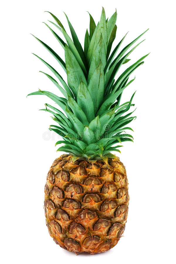 Download One ripe pineapple stock photo. Image of juicy, food - 29030138