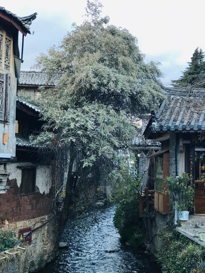 One river in Lijiang royalty free stock photography