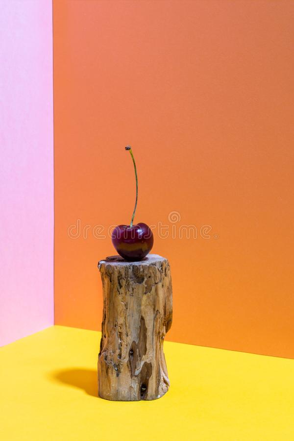 One small wooden stump eaten by bark beetle with cherry on it on bright pink, yellow and orange background. Minimal colorful still life photography. Pop Art stock images