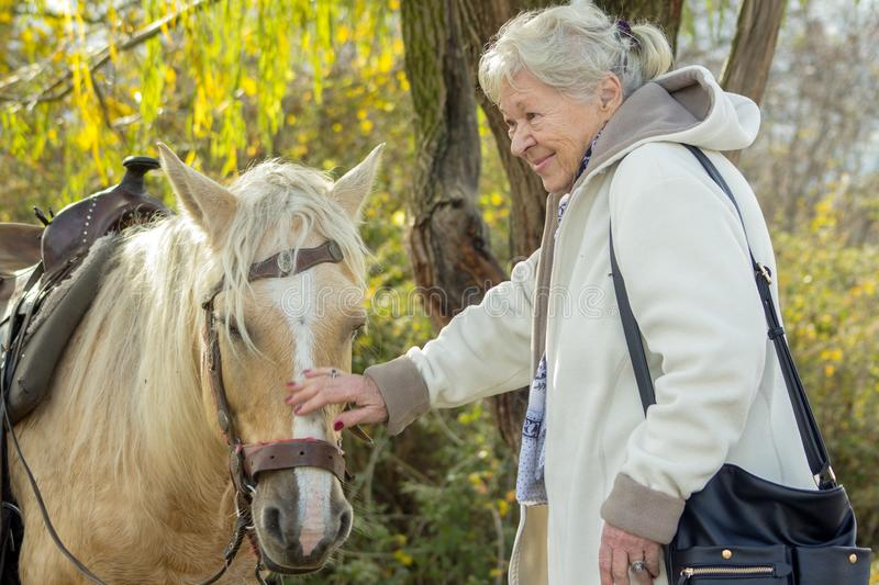 Portrait of a smiling old lady with a horse. stock photo