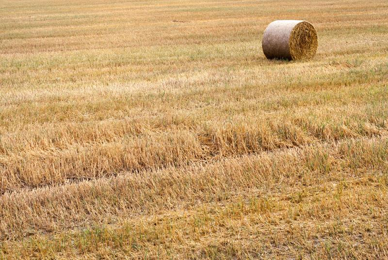 one stack of straw stock images