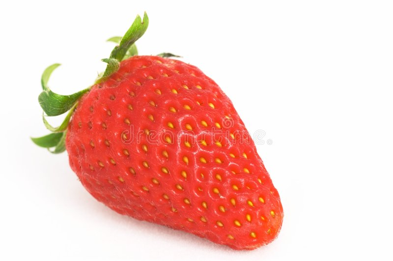 One Strawberry royalty free stock photos