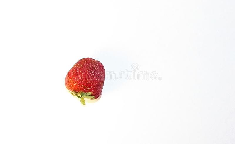 One strawberry berry royalty free stock photography