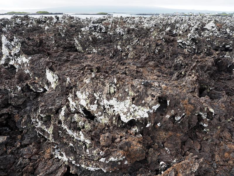 Stuffed lava on island Islote Tintoreras commemorates the moonland, Galapagos, Ecuador royalty free stock photography