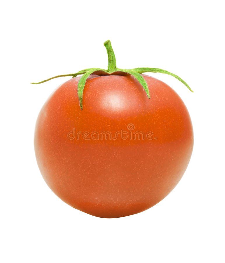 Download One Tomato stock photo. Image of macro, healthy, feed - 18271170