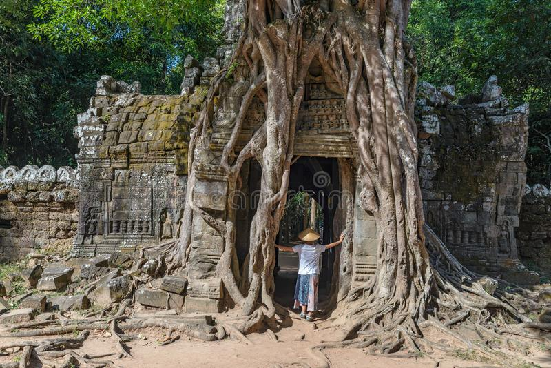 One tourist visiting Angkor ruins amid jungle, Angkor Wat temple complex, travel destination Cambodia. Woman with traditional hat stock image