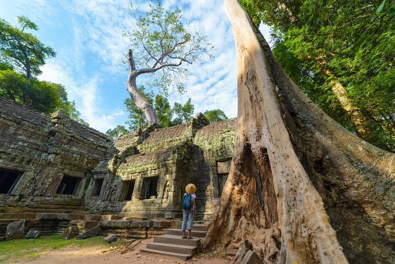 One tourist visiting Angkor ruins amid jungle, Angkor Wat temple complex, travel destination Cambodia. Woman with traditional hat royalty free stock photography