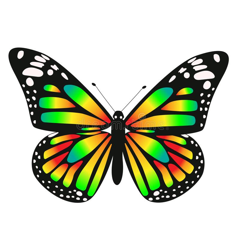 One toxic gradient butterfly. Vector graphics isolated on white background royalty free illustration