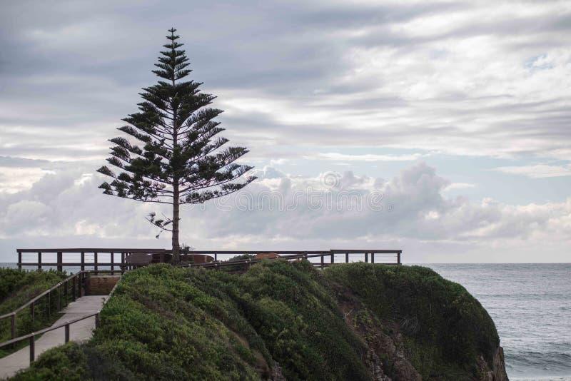 One Tree Point. In NSW Australia stock image