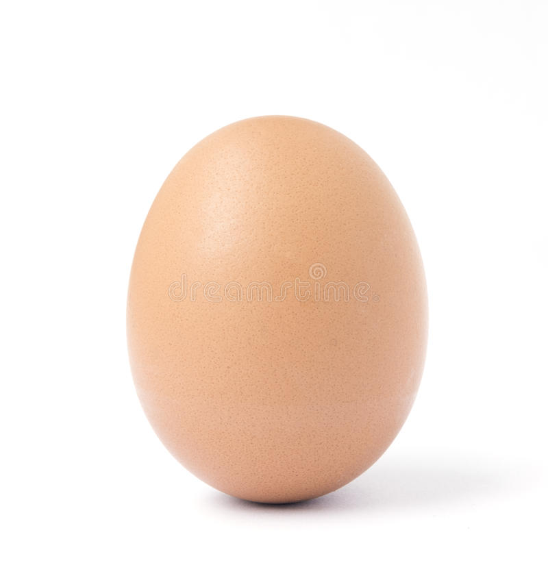 One upright brown chicken egg. One brown chicken egg standing upright isolated against a white background stock images