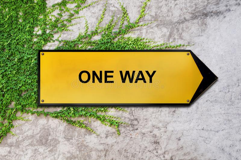 One way on yellow sign hanging on ivy wall. Concrete texture background royalty free stock photos